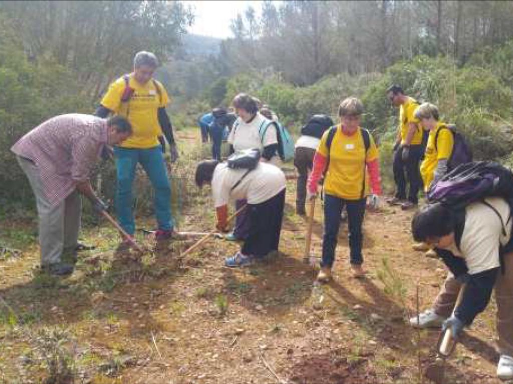 Desenvolupem la nostra primera jornada de voluntariat ambiental al Parc del Garraf