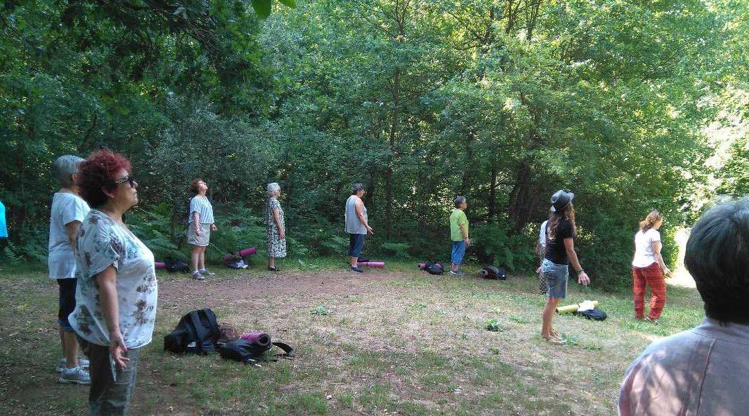 Immersió de salut i benestar al bosc d'alt valor natural de Can Serra d'Olot