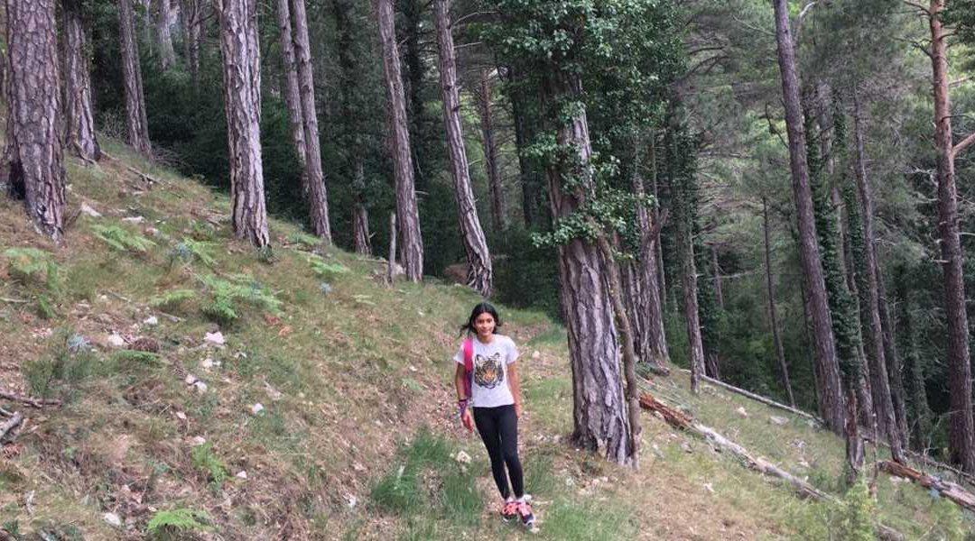 Concretant projectes de boscos terapèutics al Parc Natural dels Ports