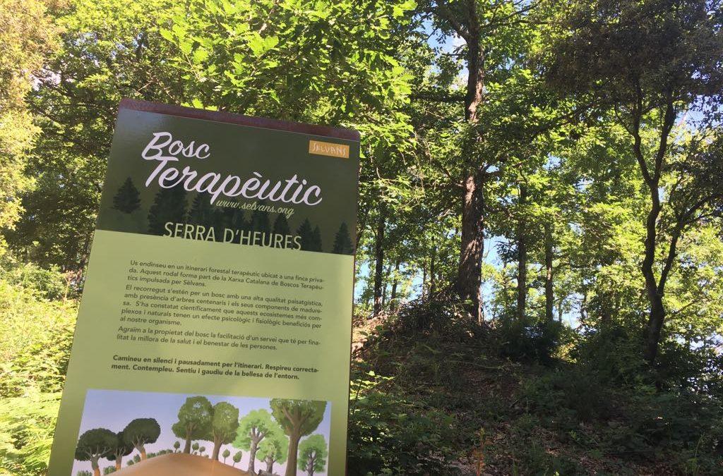 Inaugurado en Sant Hilari Sacalm el 5o bosque terapéutico de la red Sèlvans
