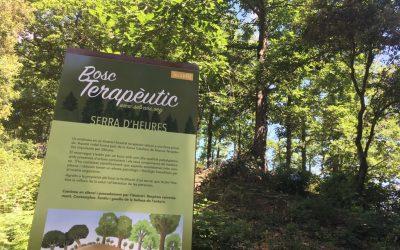 Inauguració del 5è bosc terapèutic Sèlvans, a Sant Hilari Sacalm