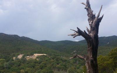 Properes noves actuacions a la finca de Baussitges gràcies a un ajut de la Diputació de Girona